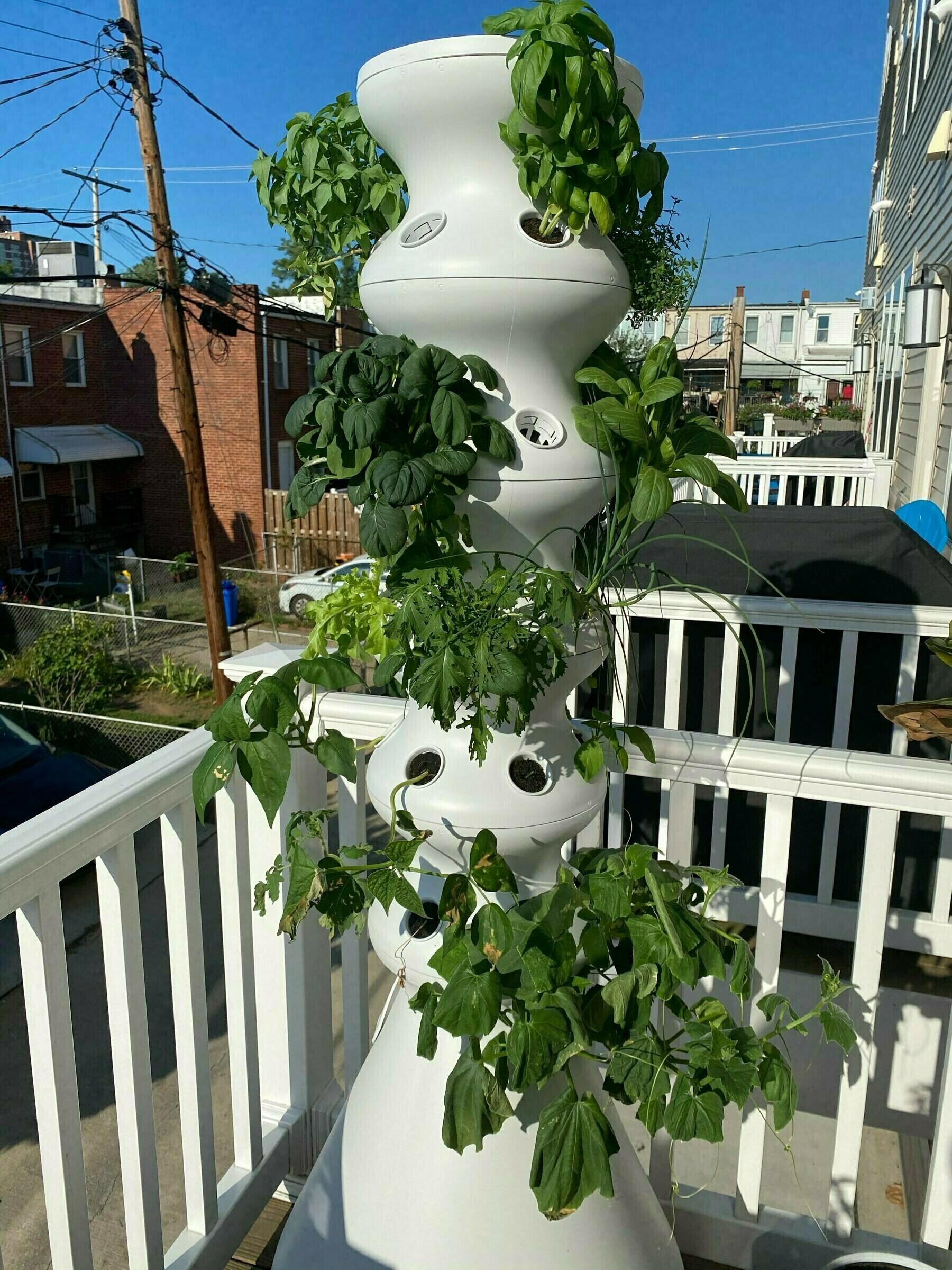 Vertical white hydroponic planter with vegetables growing.