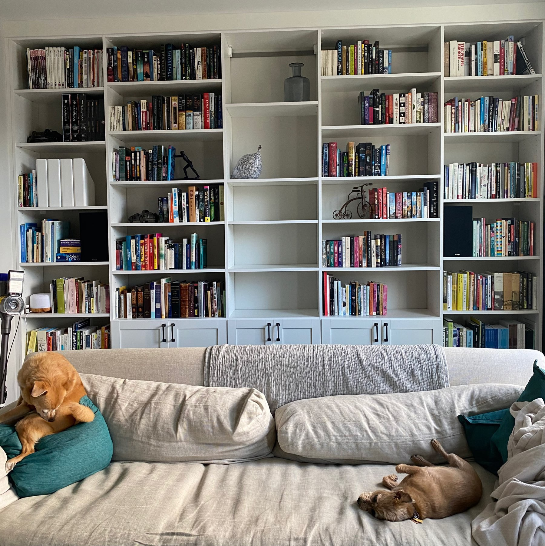 Built-in bookshelves with the books spread throughout