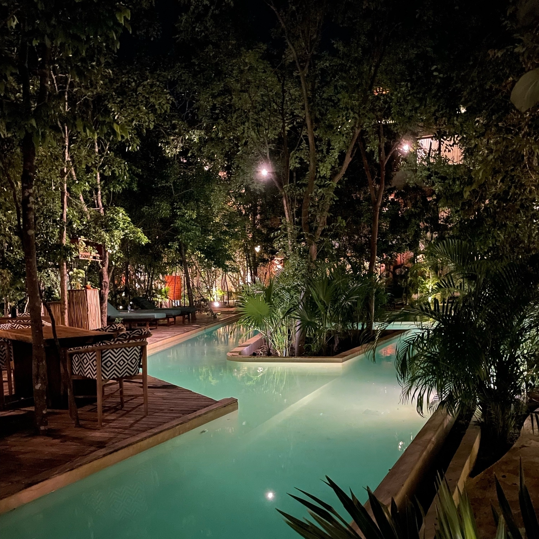 A pool with humid mist at night lit from underneath surrounded by jungle foliage.
