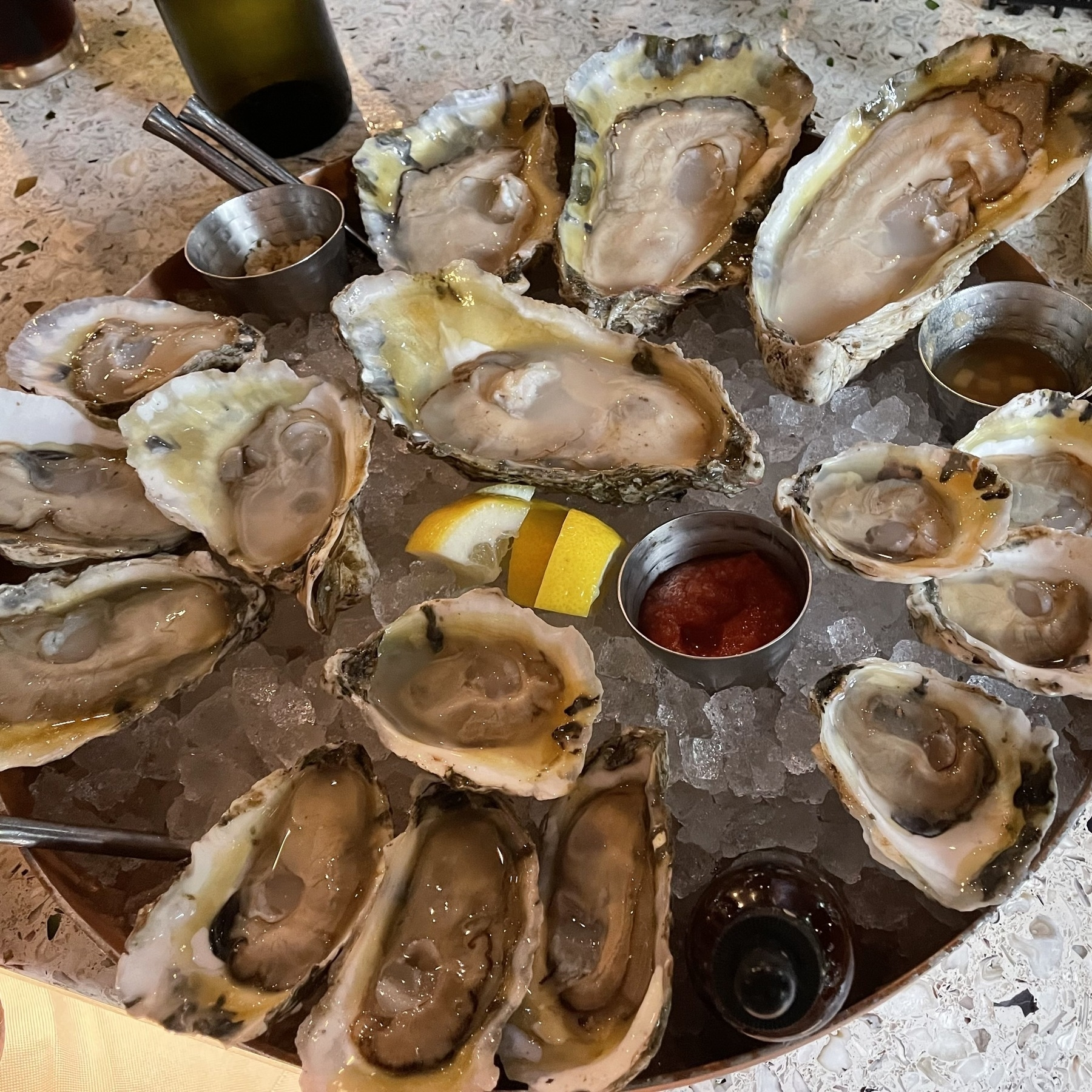 16 oysters laid out on a bed of ice at True Chesapeake.