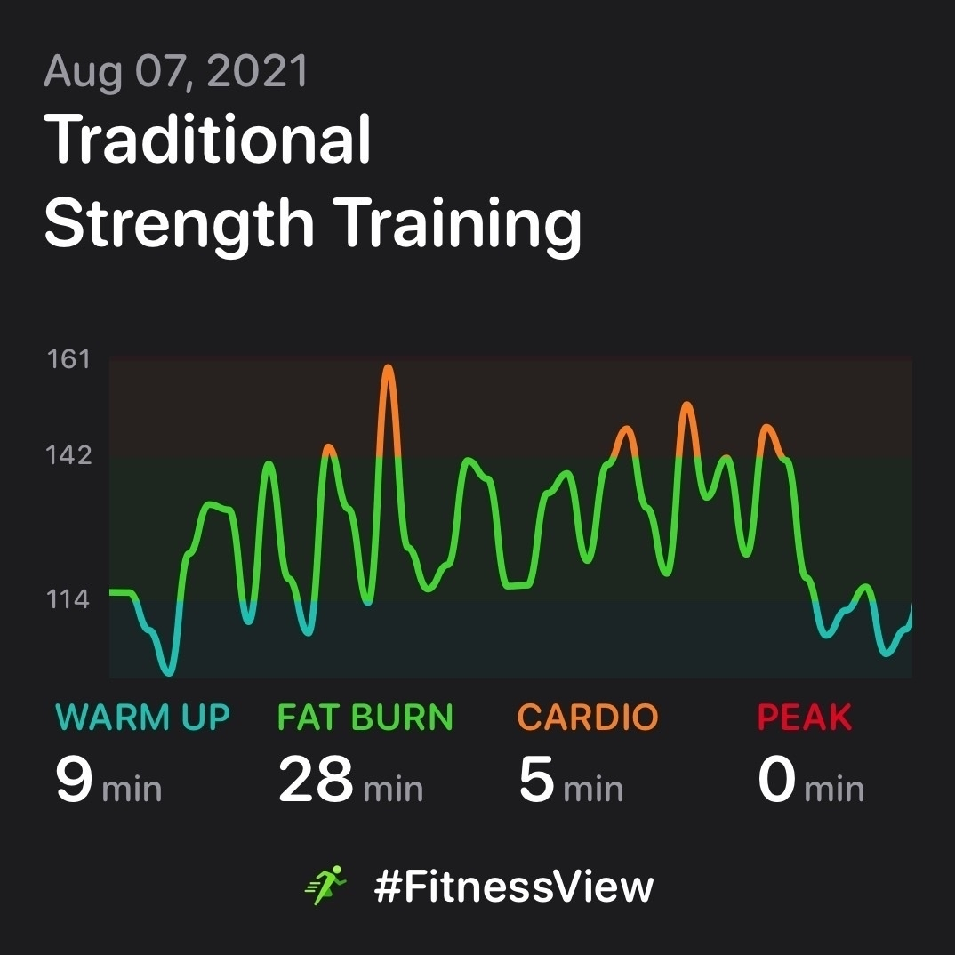 A graph of my heart rate during a recent weightlifting workout.